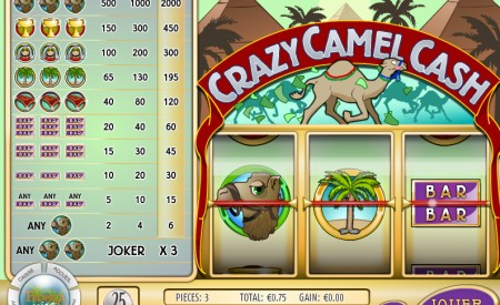 Tropica Casino aperçu