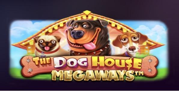Pourquoi The Dog House Megaways est-elle l'une des slots les plus populaires du net ?