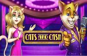 Cats and Cash, la version remasterisée du succès de Play'n GO