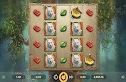 Druid's Dream Slot : Wilds, respins et free spins à volonté