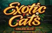 Exotic Cats, la nouvelle slot Microgaming et ses gros matous tropicaux
