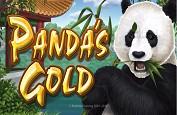Deux nouvelles slots RTG sur Golden Euro : Ancient Gods et Panda's Gold