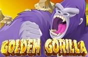 Rival Gaming sort deux nouvelles machines à sous - Golden Gorilla et Snow Wonder