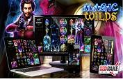 Magic Wilds : une ambiance mystérieuse et un lot de bonus pour vous séduire