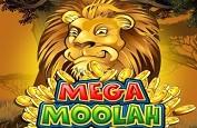 Mega Moolah encore et toujours ! Un joueur touche un jackpot de 3,5€ millions
