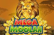 Mega Moolah transforme un joueur en ligne en un multi-millionnaire !