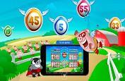 Deux nouveaux jeux de video bingo en ligne avec Play'n'go