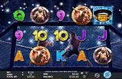 Une machine sur l'UFC bientôt grâce à Genesis Gaming