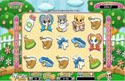 Puurfect Pets, le nouveau jeu de casino tout mignon de RTG