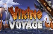 Viking Voyage, une épopée à laquelle vous pouvez ressortir plus riche