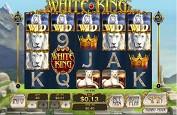Playtech sort un nouveau jeu sur le roi de la savane