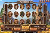Mettez-vous dans la peau de cow-boys du Far West avec la slot Wild Rodeo