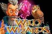 Un vent de magie souffle avec le nouveau jeu de RTG: Wild Wizards